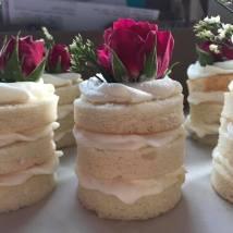 Buffet Mini Cakes